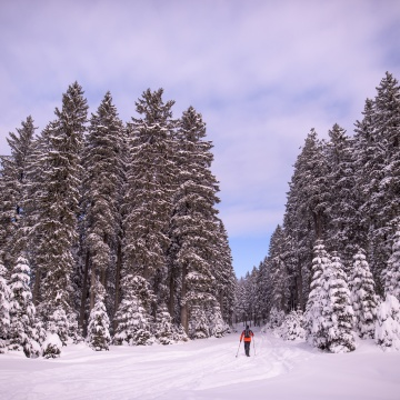 Skiing on Pohorje