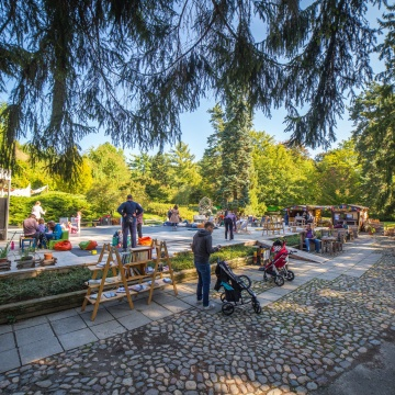 Maribor with Kids: Best Things to See and Do with Your Family